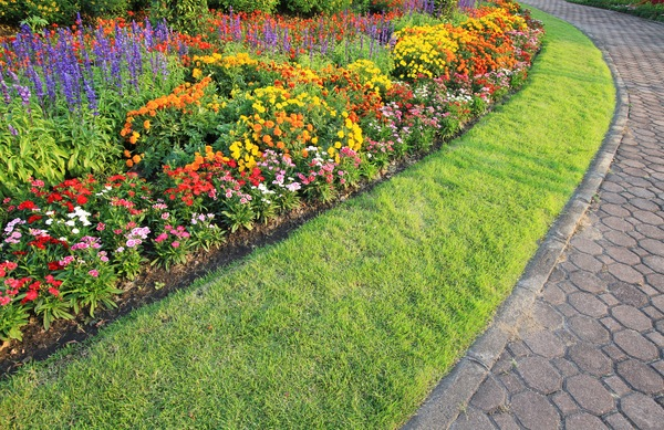 Landscape Design Basics: Principles Do-It-Yourselfers Need To Know